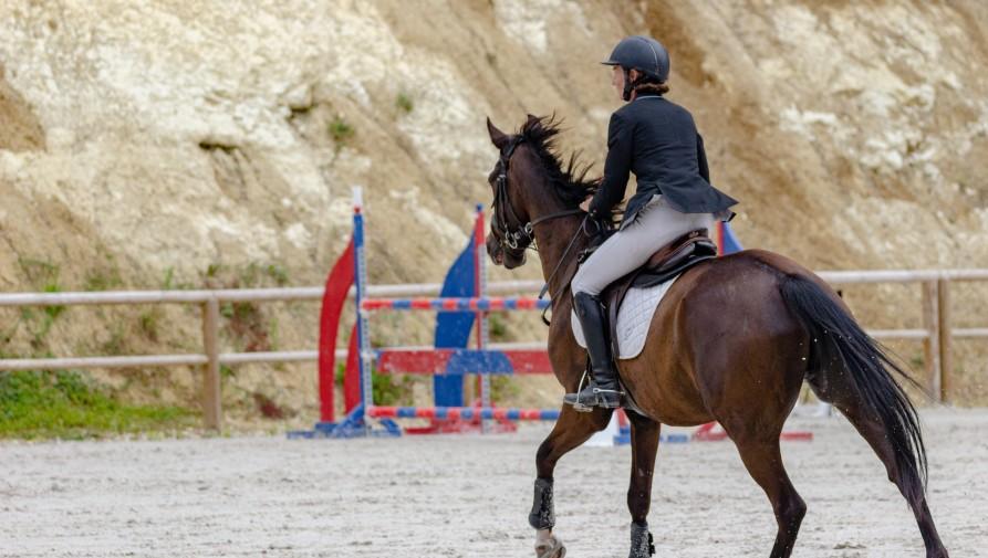 Olimpiai szereplésre törekszik a magyar lovassport