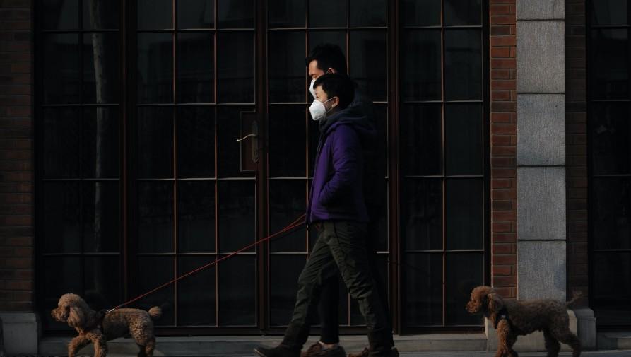 Hónapok után újra megjelent Pekingben a fertőzés